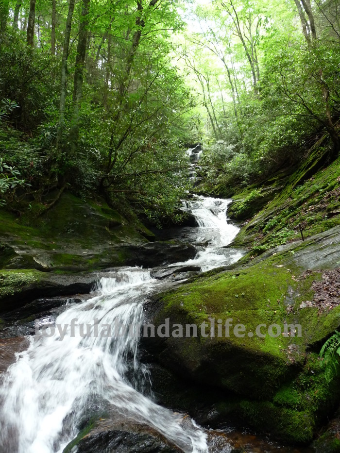 Roaring Falls hike