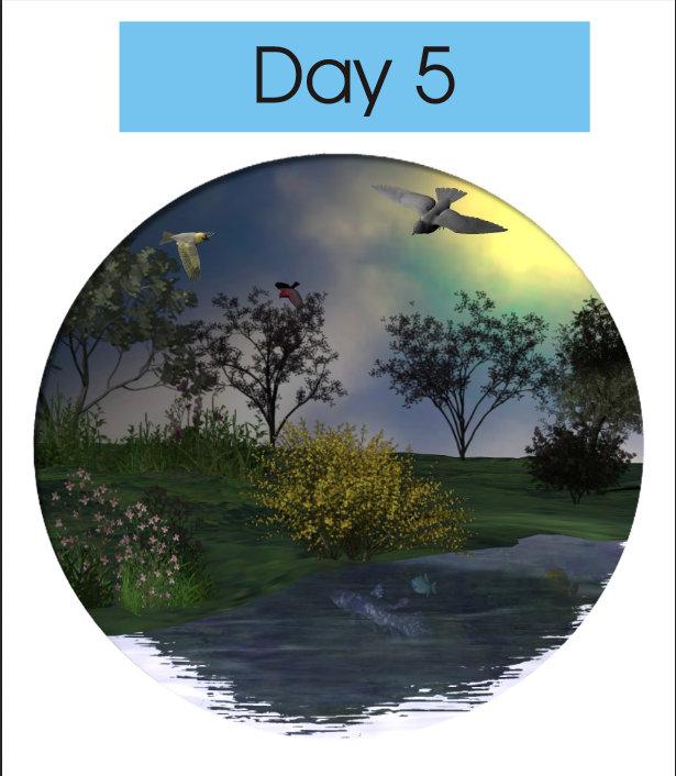 Creation day 5