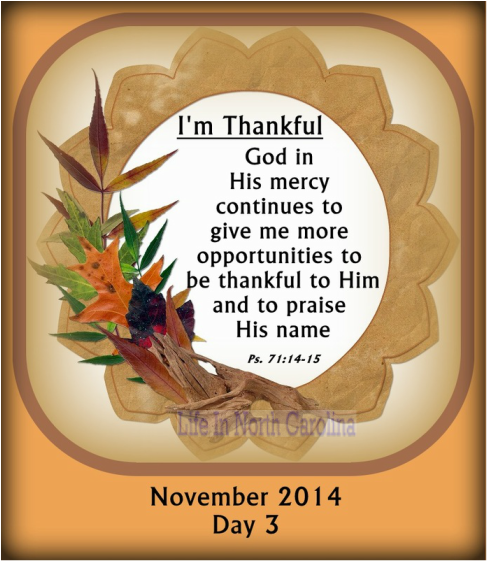 Each day is a blessing from God with more opportunites to thank and praise Him!