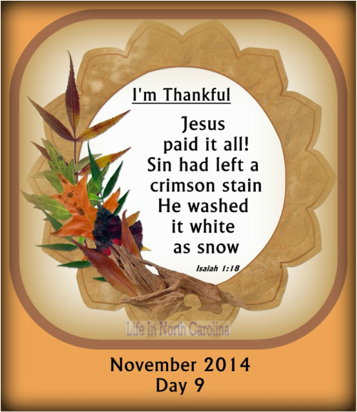 Jesus paid it all, all to Him I owe.  Sin had left a crimson stain, but praise God He washed my sinful heart white as snow.