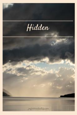 Hidden (2)