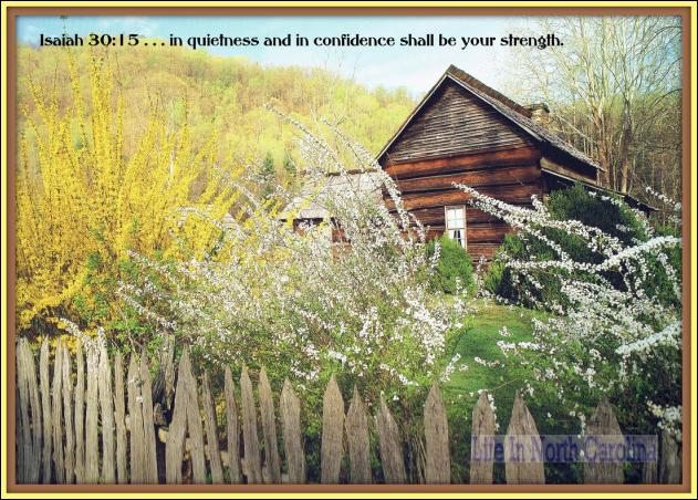 Quiet Confidence in Jesus  Thankful