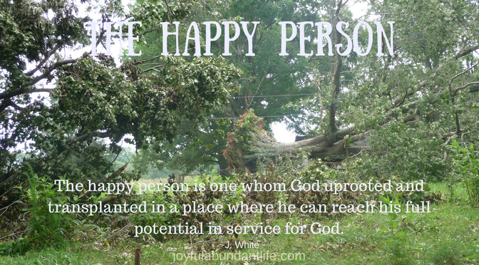 The Happy Person - Are You A Happy Person according to God's Word?