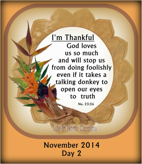 I am thankful for the truths that can be applied to my life from the story of Balaam and the talking donkey.