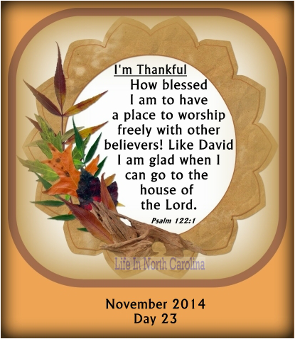 Like David, I am glad when I can go into the house of the Lord and worship with other believers. (Psalm 122:1)