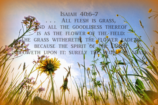 All flesh is grass, ... the grass withereth, the flower fadeth, because the Spirit of the LORD bloweth upon it...