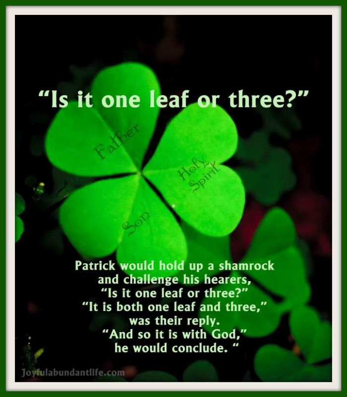Is it one leaf or three? Method used by St. Patrick to teach the trinity
