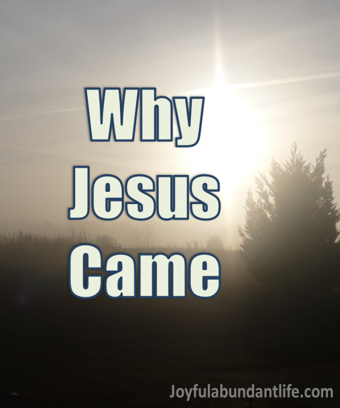 Why Jesus Came. Here are five reasons why Jesus Came.