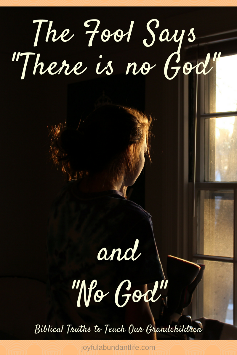 """A foolish thing to say - The fool says """"there is no God"""" and """"No God"""""""